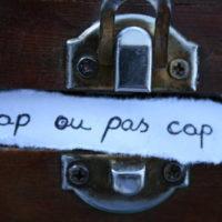 CAP du SDIS 44